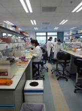 Les recherches médicales effectuées par la University of Hong Kong et l'Institut Pasteur ont joué un rôle décisif en matière de santé publique
