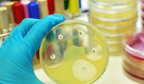 Maîtrise de l'antibiorésistance : lancement d'un programme interministériel