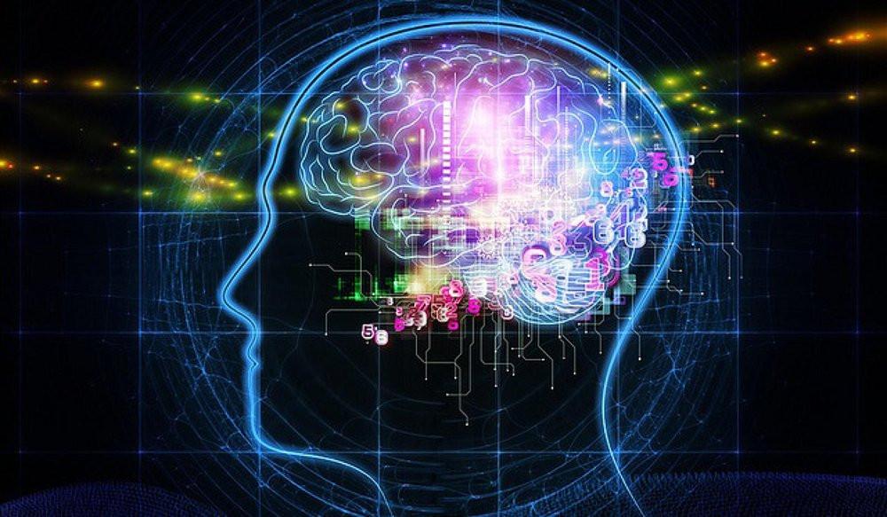 Explorer la « carte » de notre cerveau pour ouvrir la voie à la médecine personnalisée du futur #INSERM