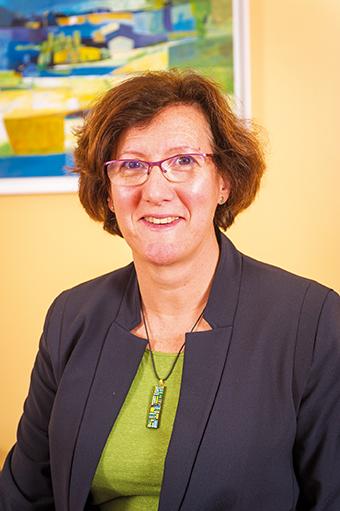 Anne Fabrègue, Directrice Générale du GHDCSS
