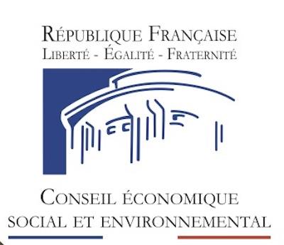 Crise sanitaire: les dix-huit préconisations du CESE