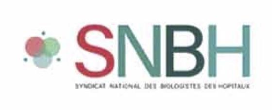 Profitant de l'annonce de la composition de son nouveau bureau, le SNBH a également publié un aperçu de son prochain logo. ©DR