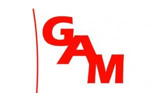 Digitalisation des achats : le GAM dévoile sa plateforme E-GEN