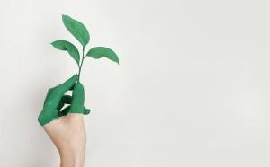 Développement Durable : les blocs opératoires du CHU de Toulouse se mettent au vert