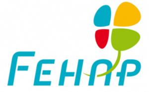 La FEHAP détermine les grands axes de sa Plateforme politique 2017-2022