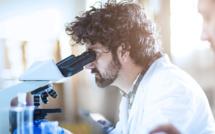 NANO-IMAGERIE PAR FLUORESCENCE: LE TEST DE TISSU ELABORE PAR KONICA MINOLTA FACILITE LE DIAGNOSTIC DU CANCER