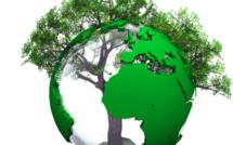 Un observatoire du développement durable est créé dans les champs de la santé, du social et du médico-social