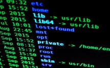 Ouverture d'un dispositif d'accompagnement de cybersécurité au profit des structures de santé